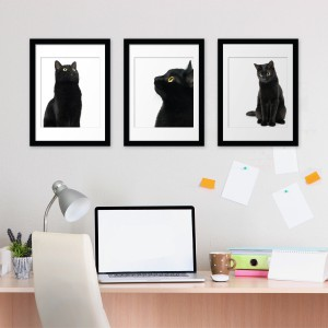 Motiv Črne mačke
