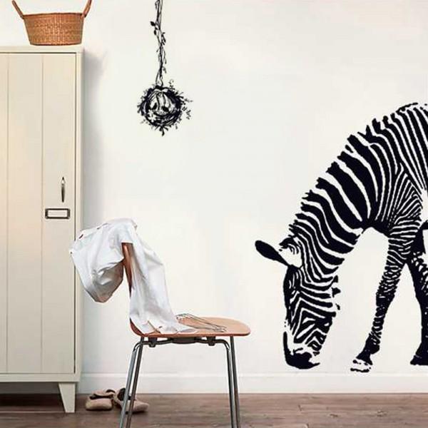 Motiv Zebra